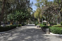 Limassol Municipal Garden