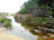 athalassa lake nicosia cyprus