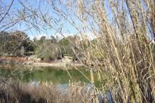 athalassa lake nicosia