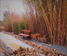 botanical garden athalassa cyprus
