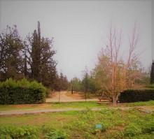 botanical garden athalassa