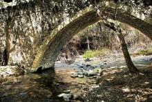 bridge trimiklini