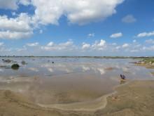 paralimni lake cyprus