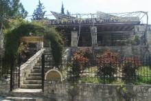 tsangarides winery paphos
