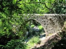 venetian bridge kalopanayiotis
