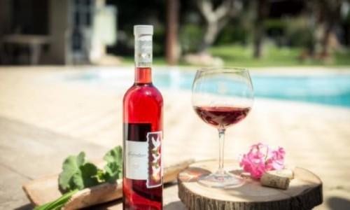 Hadjiantonas Winery - Parekklisia