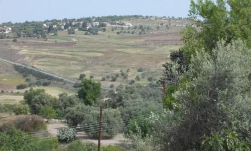 Arnies Nature Trail