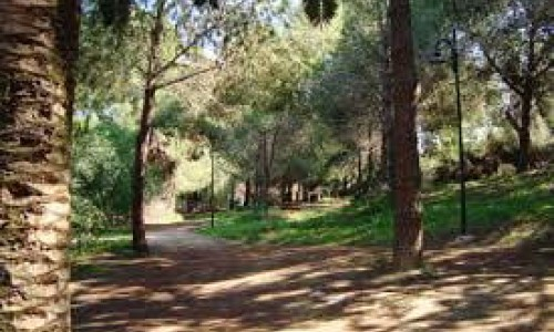 Athalassa Natural Forest Park