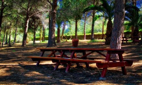 Athalassa Picnic Site
