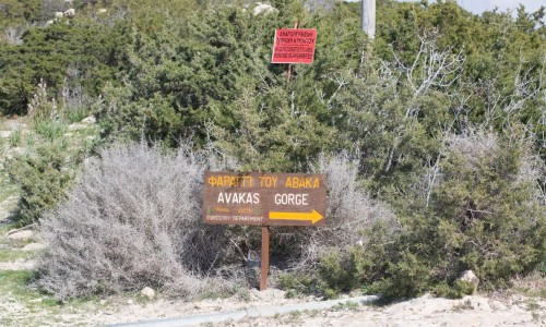 Faraggi tou Avaka ( Avakas Gorge) Nature Trail