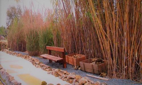 Athalassa Botanical Garden