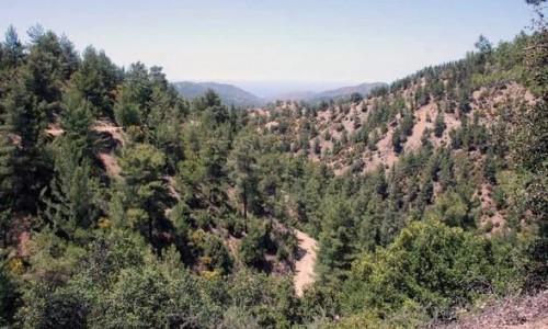 Gefiri tou Livadiou Picnic Site