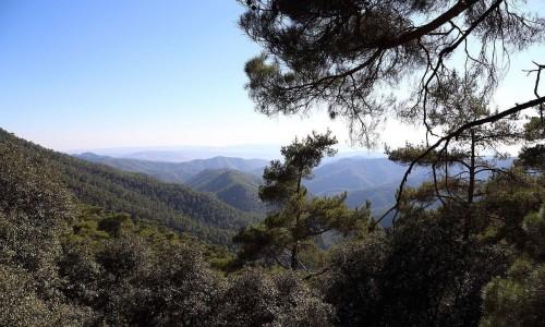 Horteri Nature Trail