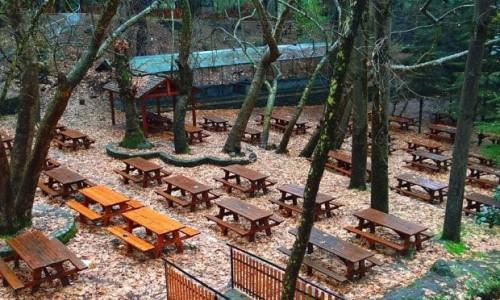 Kampos tou Livadiou Picnic  Site