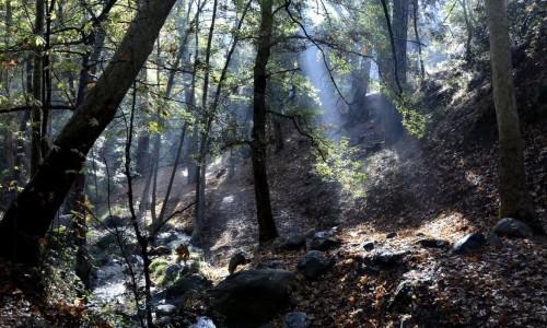 Livadi Nature Trail