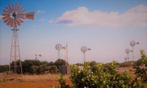 Paralimni Windmills