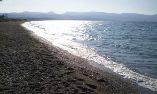 Polis Chrysochous Camping Site