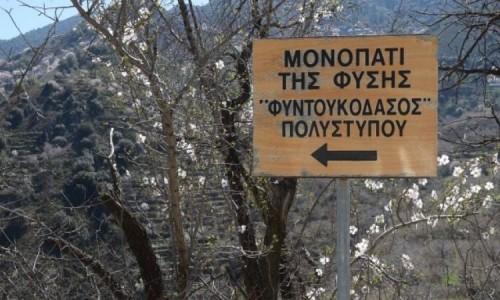 Foundoukodasos Polystipou Nature Trail