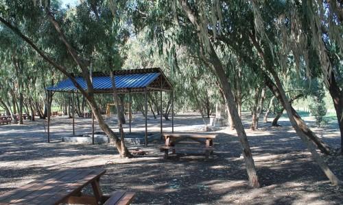 Timi Picnic Site