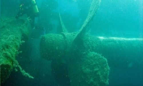 Zenobia wreck diving site