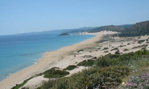 Pachyammos Village Beach