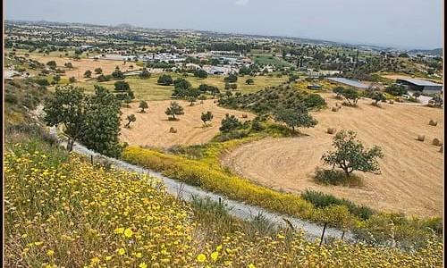 Kofinou Village