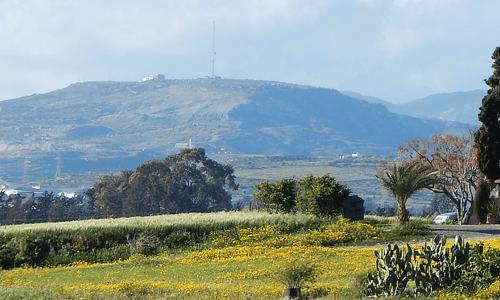 Mandria Village - Paphos