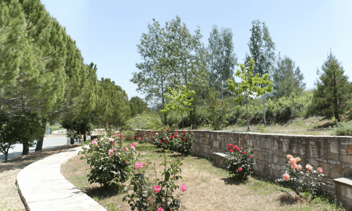 Pera Pedi Village, Limassol