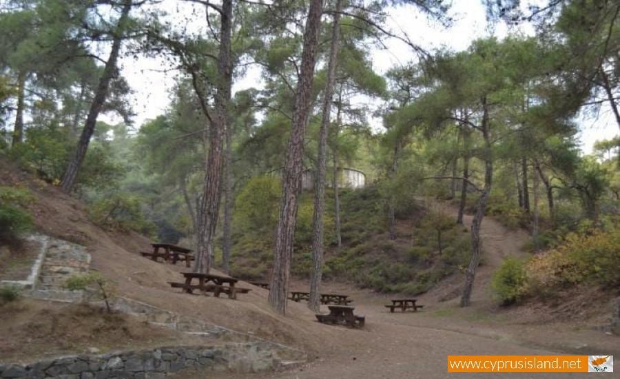agia picnic