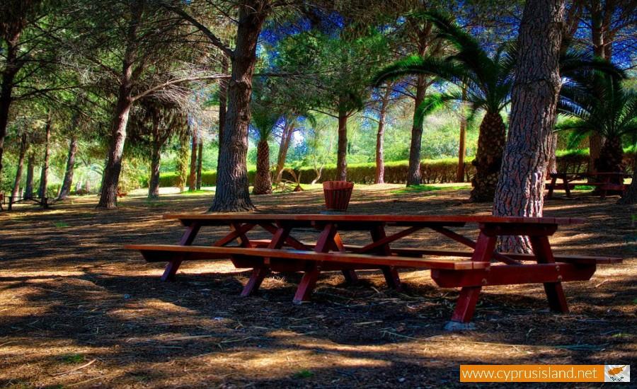 athalassa picnic