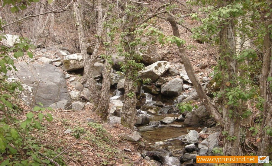 caledonia nature trail