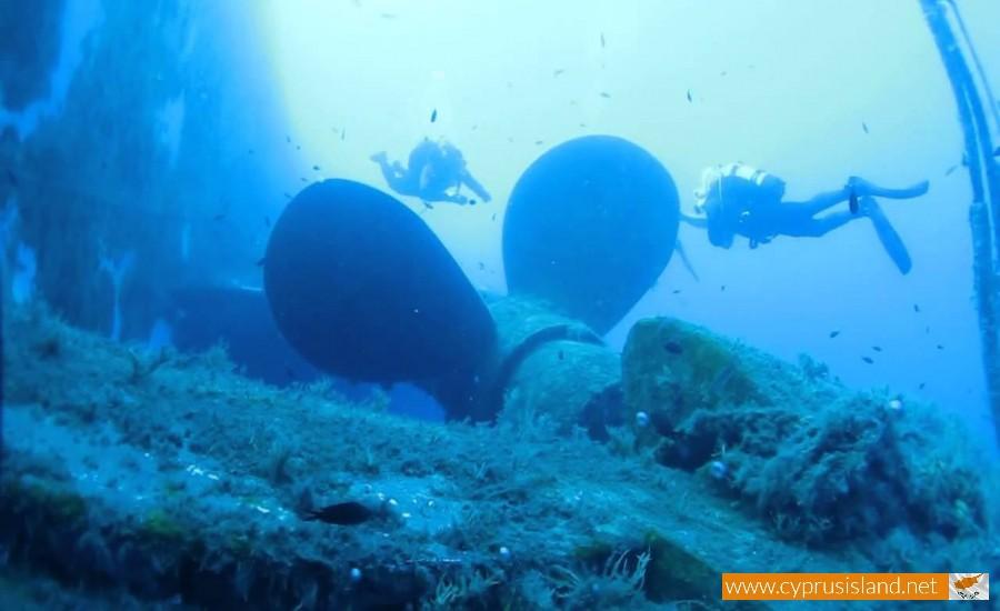 diving zenovia