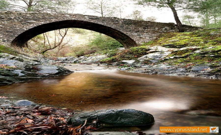 elia bridge