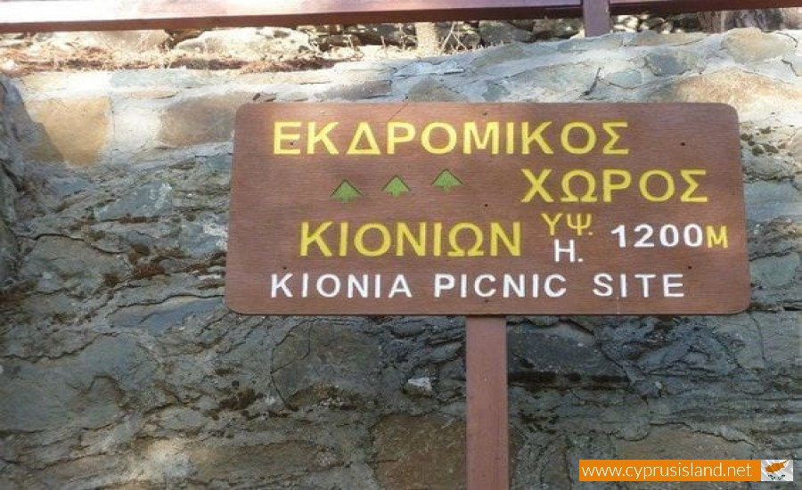 kionia-picnic