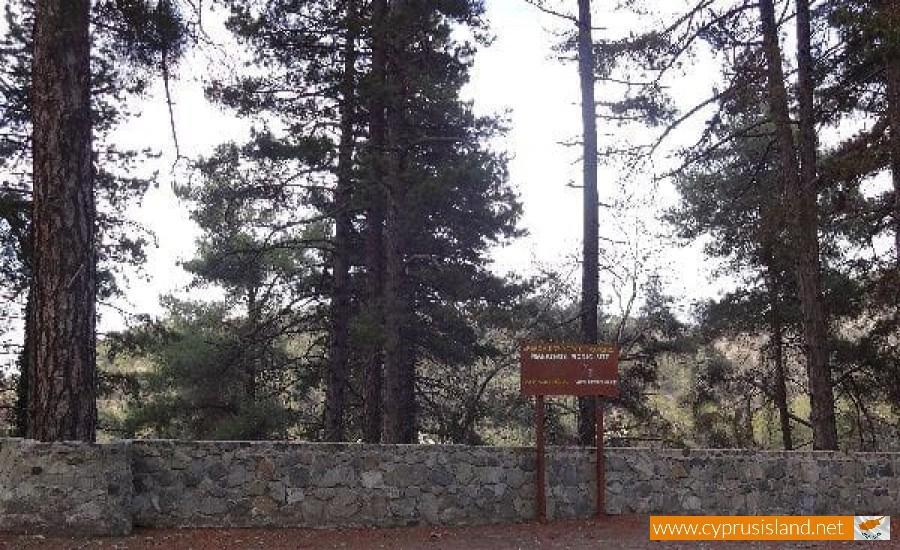 marathos picnic site