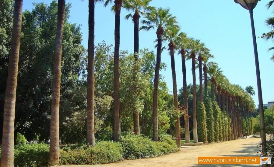 Attractive Nicosia Municipal Gardens
