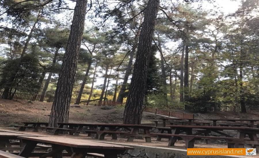 Platania Camping Site | Cyprus Island