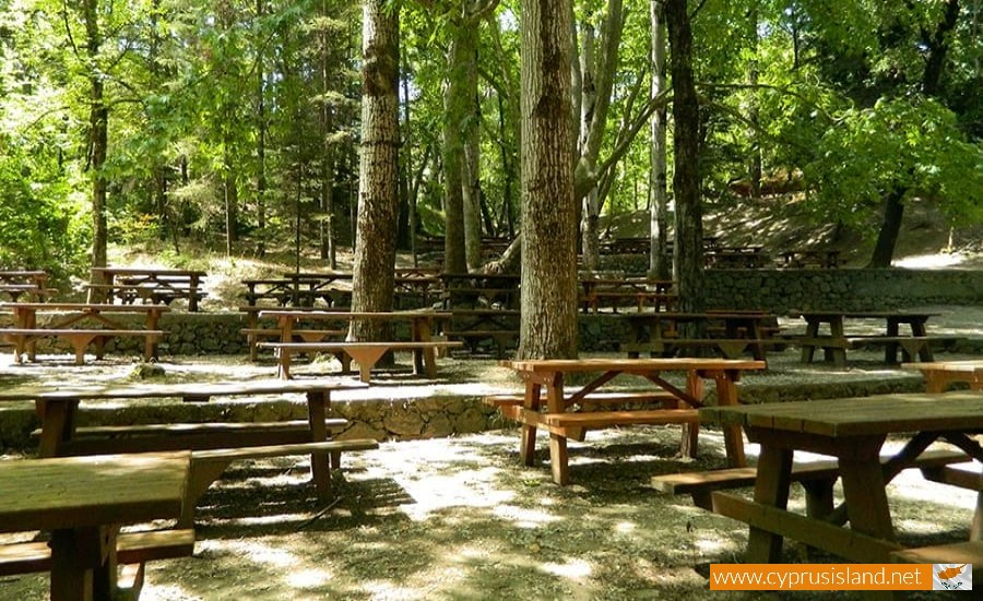 platania-camping-site