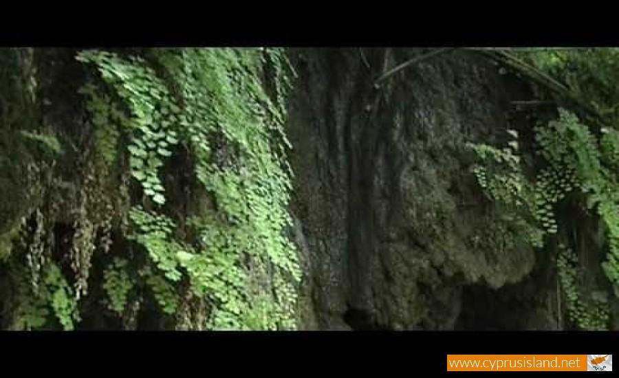 stalactites fini