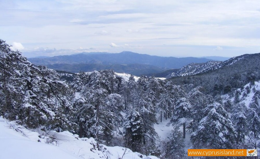 Troodos mountain