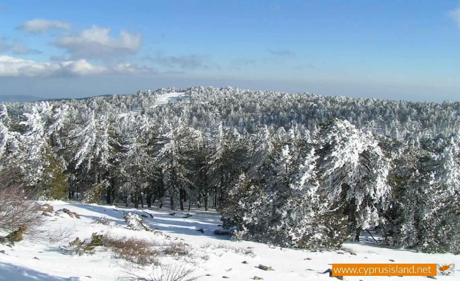 Snow in Troodos