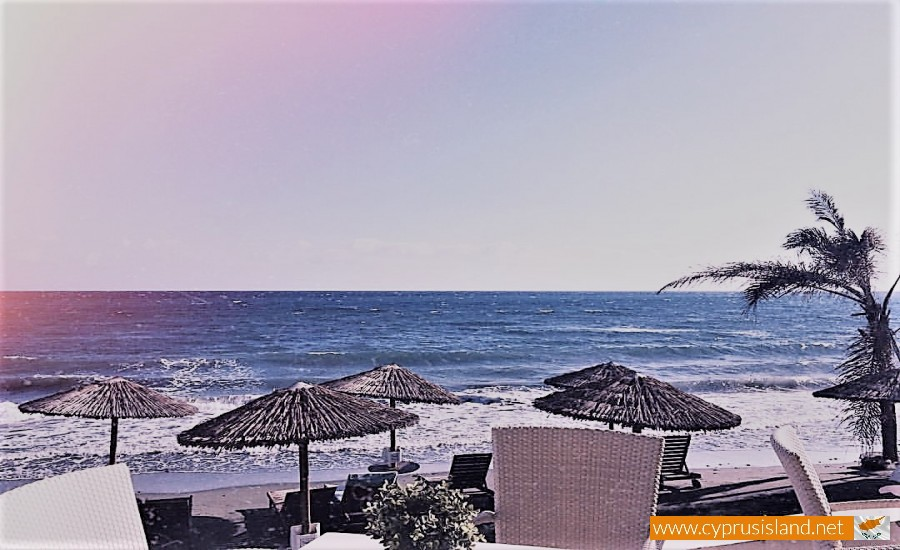 blueberry beach limassol