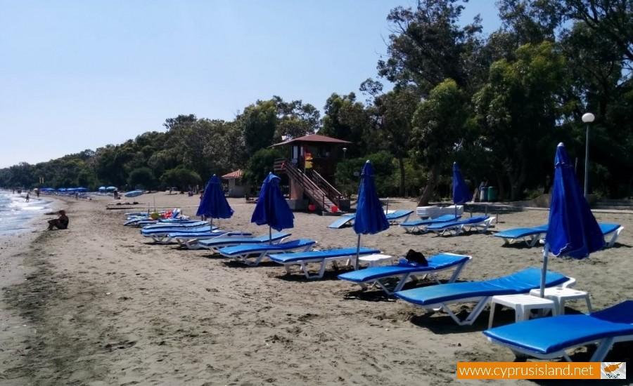 dasoudi beach limassol