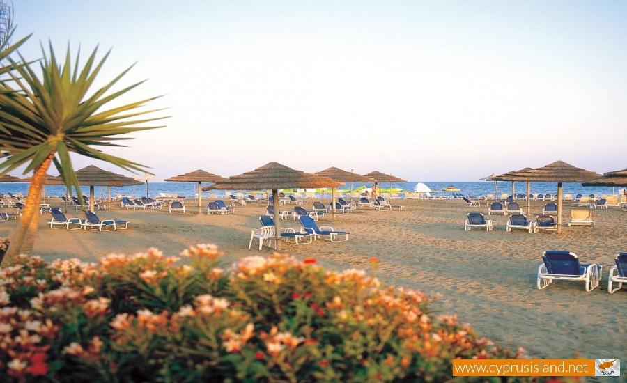 panayies beach cyprus