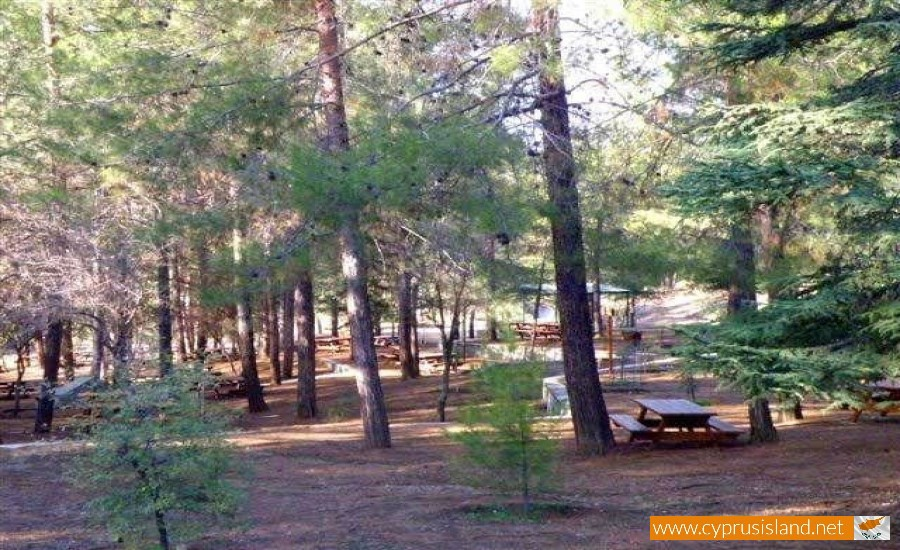 cyprus-forest-picnic