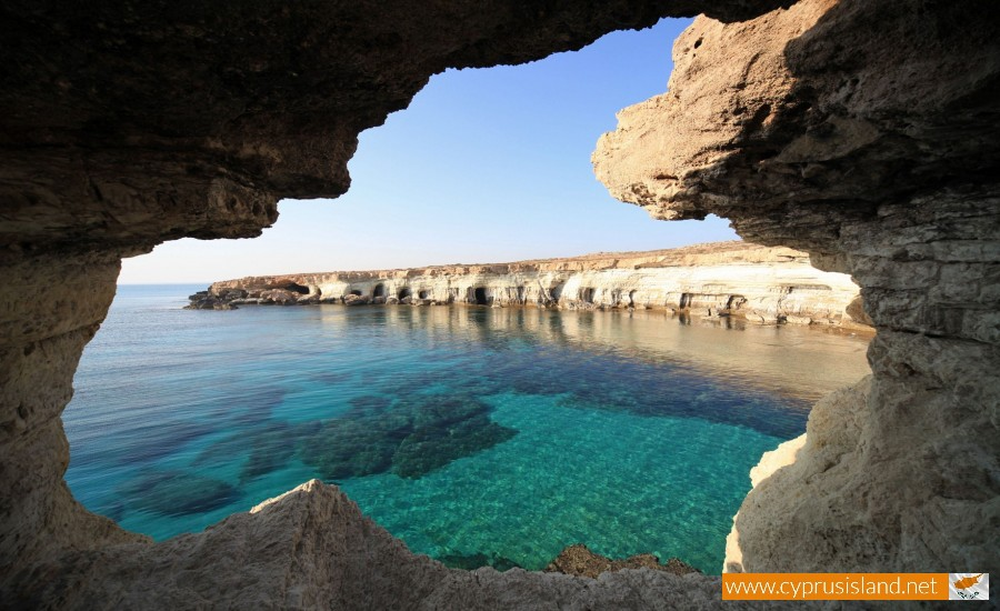 cyprus nature paralimni