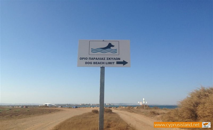 kashianes beach larnaca