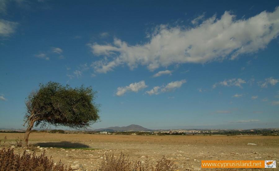 mazotos village cyprus