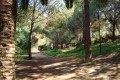 athalassa forest park