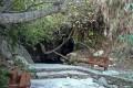 Baths of Aphrodite Paphos